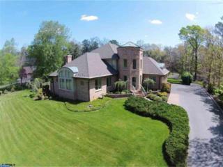 220 Maple Terrace, Buena, NJ 08310 (MLS #6924323) :: The Dekanski Home Selling Team