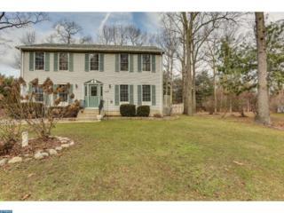 710 Webster Drive, ELK TWP, NJ 08343 (MLS #6925048) :: The Dekanski Home Selling Team