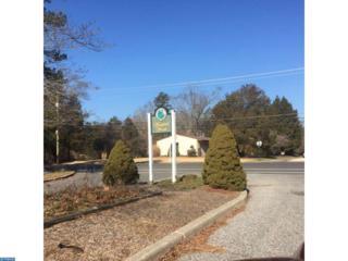 8 Nottingham Drive, Winslow Twp, NJ 08081 (MLS #6926428) :: The Dekanski Home Selling Team