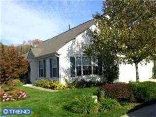 173 Blue Heron Drive, Thorofare, NJ 08086 (MLS #6927566) :: The Dekanski Home Selling Team
