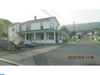 230 S 4TH Street, Tower City, PA 17980 (#6927932) :: Ramus Realty Group