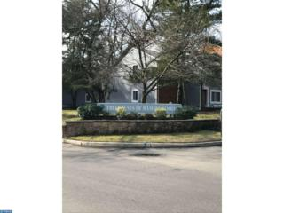 105A Mulberry Cove, Mount Laurel, NJ 08054 (MLS #6928494) :: The Dekanski Home Selling Team