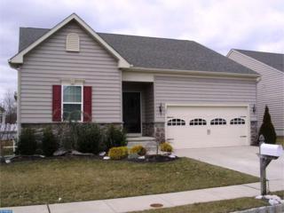 23 Josie Lane, Atco, NJ 08004 (MLS #6928911) :: The Dekanski Home Selling Team