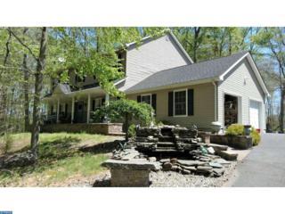 3260 Route 206, Bordentown, NJ 08022 (MLS #6932885) :: The Dekanski Home Selling Team