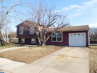 19 Ivy Lane, Sicklerville, NJ 08081 (MLS #6933637) :: The Dekanski Home Selling Team