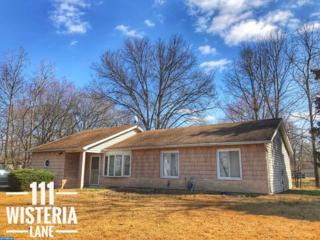 111 Wisteria Lane, Carneys Point, NJ 08069 (MLS #6934489) :: The Dekanski Home Selling Team