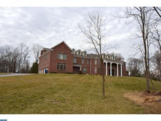 1 Benedek Road, Princeton, NJ 08540 (MLS #6935852) :: The Dekanski Home Selling Team
