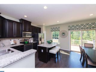 177 Village Green Lane, Sicklerville, NJ 08081 (MLS #6936583) :: The Dekanski Home Selling Team