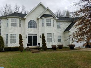 1839 Stallion Court, Williamstown, NJ 08094 (MLS #6936614) :: The Dekanski Home Selling Team