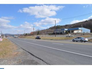 1193 Centre Turnpike, Orwigsburg, PA 17961 (#6936735) :: Ramus Realty Group
