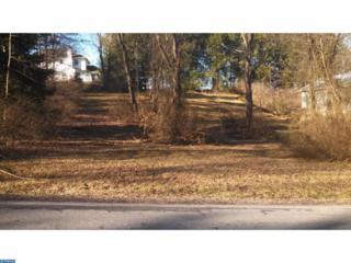 935 Wynonah Drive, Auburn, PA 17922 (#6937011) :: Ramus Realty Group