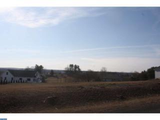 1700-01 Running Deer Drive, Auburn, PA 17922 (#6937759) :: Ramus Realty Group