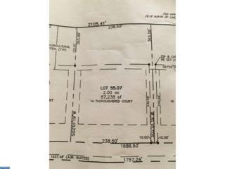14 Thoroughbred Court, Upper Deerfield, NJ 08302 (MLS #6937903) :: The Dekanski Home Selling Team