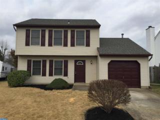 104 Chickadee Court, Swedesboro, NJ 08085 (MLS #6937991) :: The Dekanski Home Selling Team