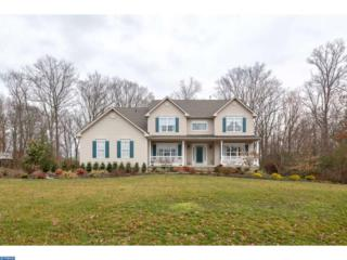 221 Grindstone Court, ELK TWP, NJ 08343 (MLS #6938495) :: The Dekanski Home Selling Team