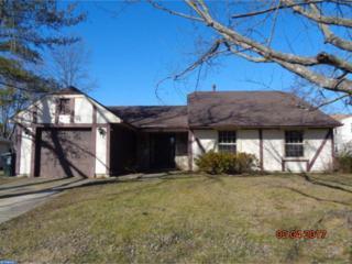 17 Chandler Lane, Voorhees, NJ 08043 (MLS #6939142) :: The Dekanski Home Selling Team