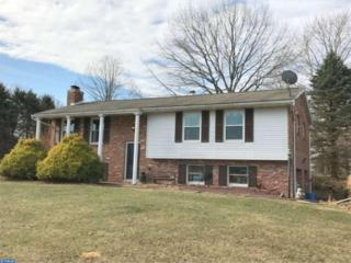 166 Valley Road, Bernville, PA 19506 (#6939277) :: Ramus Realty Group