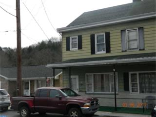 64 Water Street, Cumbola, PA 17930 (#6939437) :: Ramus Realty Group