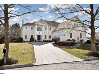 157 Christopher Drive, Princeton, NJ 08540 (MLS #6939662) :: The Dekanski Home Selling Team