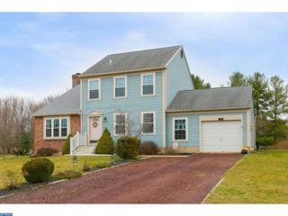 1027 Terns Landing Road, Pittsgrove, NJ 08318 (MLS #6940715) :: The Dekanski Home Selling Team