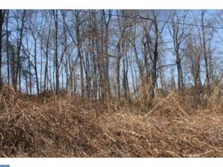 283-284 Hogan Drive, Auburn, PA 17922 (#6942009) :: Ramus Realty Group