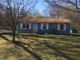 1517 Marshall Mill Road, Franklinville, NJ 08322 (MLS #6943553) :: The Dekanski Home Selling Team