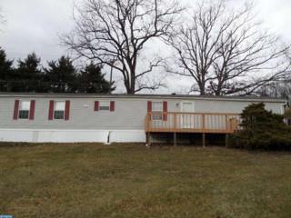 219 Molasses Hill Road, Bernville, PA 19506 (#6943642) :: Ramus Realty Group