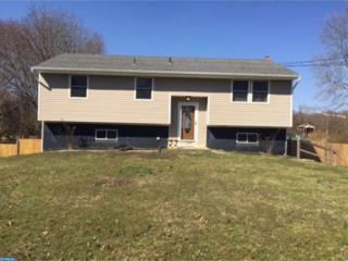1647 Dutch Mill Road, Franklinville, NJ 08322 (MLS #6943703) :: The Dekanski Home Selling Team