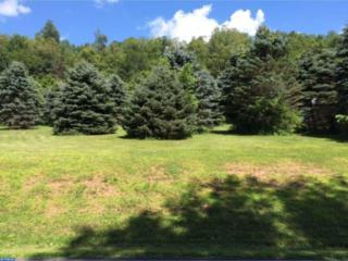 0 W Deer View Drive, Auburn, PA 17922 (#6944082) :: Ramus Realty Group