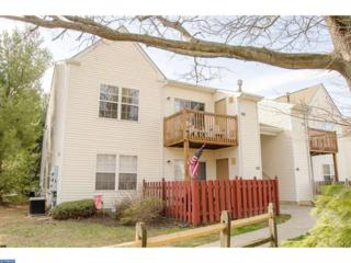 1157 Tristram Circle, Mantua, NJ 08051 (MLS #6944910) :: The Dekanski Home Selling Team