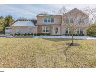 10 Columbia Place, Princeton Junction, NJ 08550 (MLS #6945209) :: The Dekanski Home Selling Team