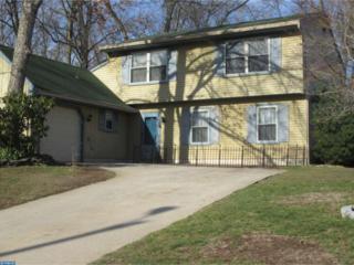 1888 Forest Drive, Williamstown, NJ 08094 (MLS #6946739) :: The Dekanski Home Selling Team
