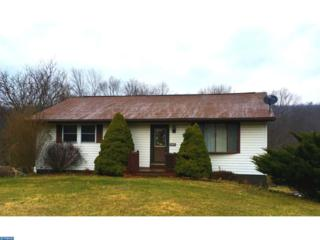 1141 Deturksville Road, Pine Grove, PA 17963 (#6946798) :: Ramus Realty Group
