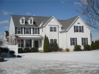 1005 Cezanne Court, Williamstown, NJ 08094 (MLS #6947479) :: The Dekanski Home Selling Team