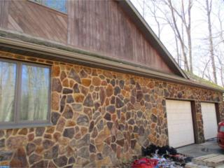 224 Rosenhayn Avenue, Bridgeton, NJ 08302 (MLS #6948100) :: The Dekanski Home Selling Team