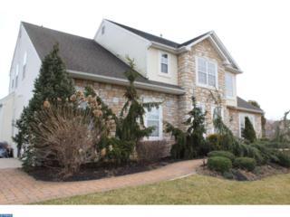 6 Blue Spruce Lane, Swedesboro, NJ 08085 (MLS #6948620) :: The Dekanski Home Selling Team