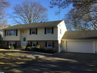21 Malaga Drive, Ewing, NJ 08638 (MLS #6948829) :: The Dekanski Home Selling Team