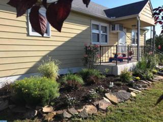 206 S South Blvd Extension, Buena, NJ 08310 (MLS #6950194) :: The Dekanski Home Selling Team