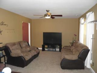 326 Chestnut Street, Williamstown, NJ 08094 (MLS #6950196) :: The Dekanski Home Selling Team