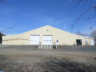 17 Pinedale Industrial Road, Orwigsburg, PA 17961 (#6951521) :: Ramus Realty Group