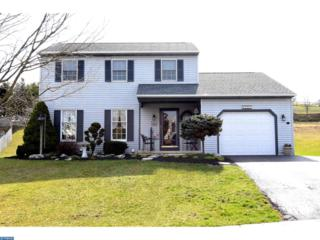 321 Homestead Avenue, Bernville, PA 19506 (#6951541) :: Ramus Realty Group