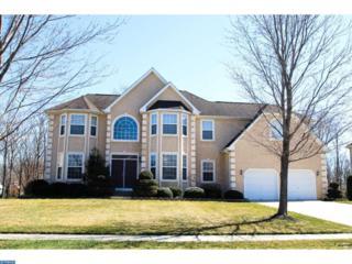 145 Blue Meadow Lane, Sicklerville, NJ 08081 (MLS #6951582) :: The Dekanski Home Selling Team