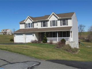 66 Hickory Lane, Bernville, PA 19506 (#6955636) :: Ramus Realty Group