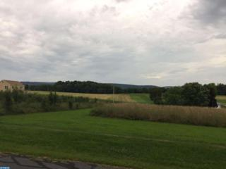Lot 7 Parallel Road, Pine Grove, PA 17963 (#6956671) :: Ramus Realty Group
