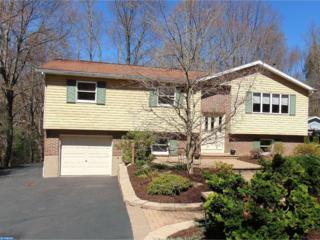 617 Willow Road, Orwigsburg, PA 17961 (#6959235) :: Ramus Realty Group