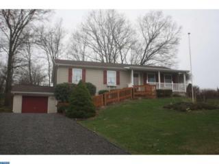 2253 Wynonah Drive, Auburn, PA 17922 (#6959703) :: Ramus Realty Group
