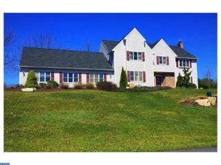 1788 Tanglewood Road, Orwigsburg, PA 17961 (#6959889) :: Ramus Realty Group
