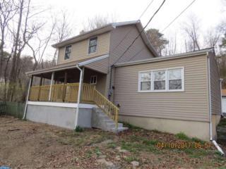 786 Suedberg Road, Pine Grove, PA 17963 (#6961536) :: Ramus Realty Group