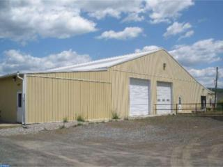 17 Pinedale Industrial Road, Orwigsburg, PA 17961 (#6962273) :: Ramus Realty Group