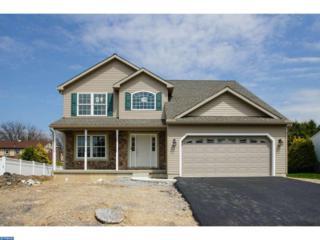 799 New Schaefferstown Road, Bernville, PA 19506 (#6962733) :: Ramus Realty Group